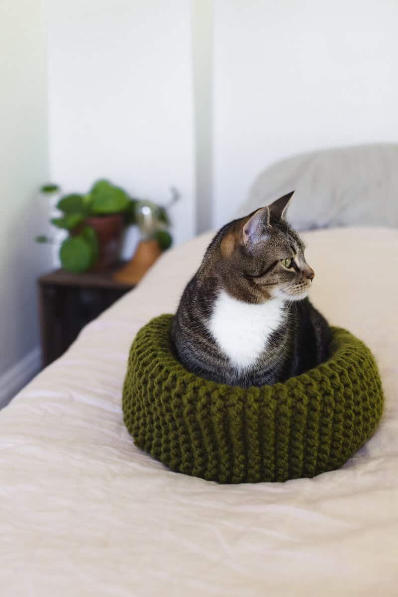Make Your Own Knit Cat Bed - A Beautiful Mess