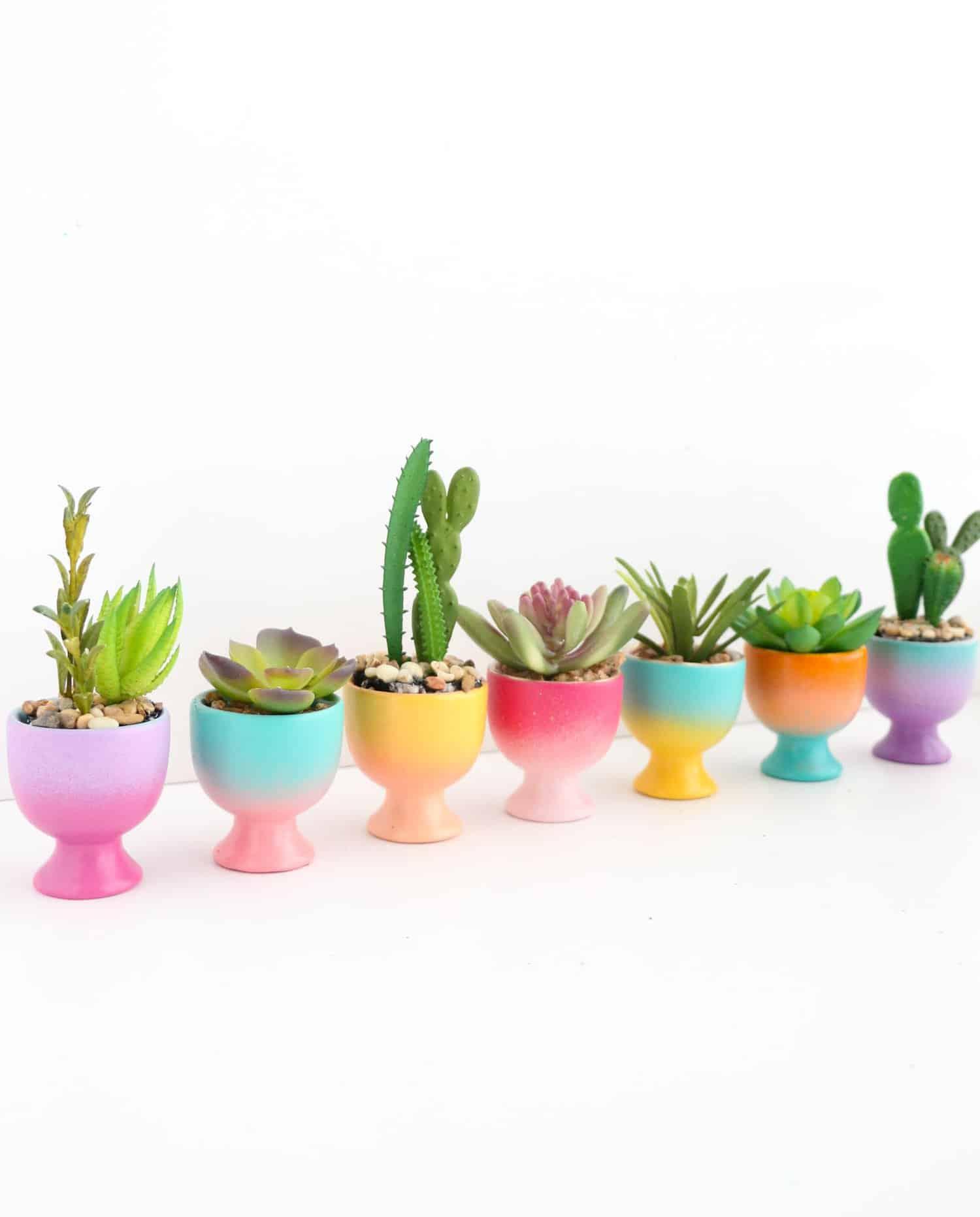 DIY Mini Gradient Egg Cup Planters