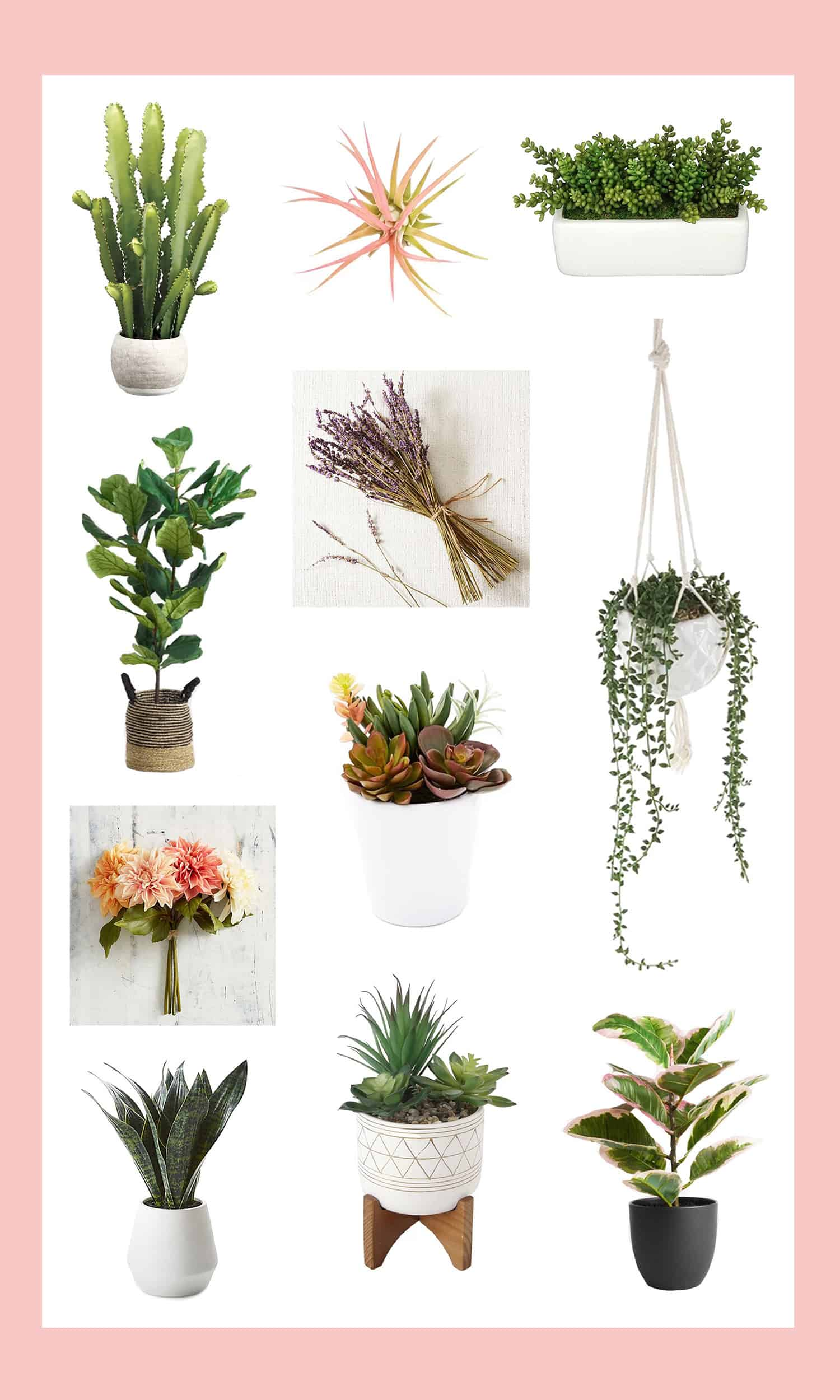 Our-favorite-faux-plants-flowers Farmhouse Real Indoor Plants on contemporary indoor plants, shabby chic indoor plants, antique indoor plants,