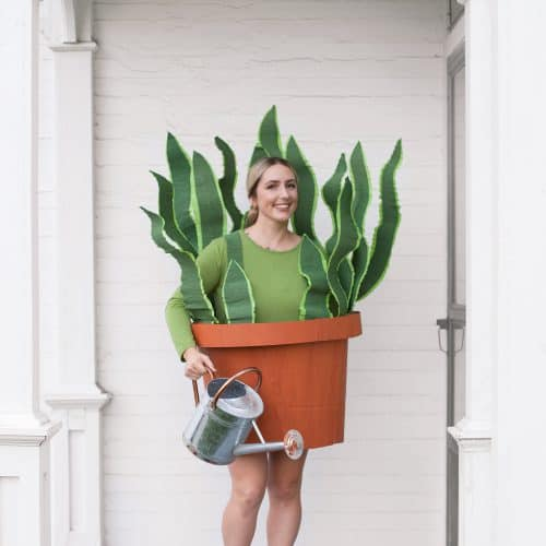 House Plant Costume Made from a Cardboard Box!