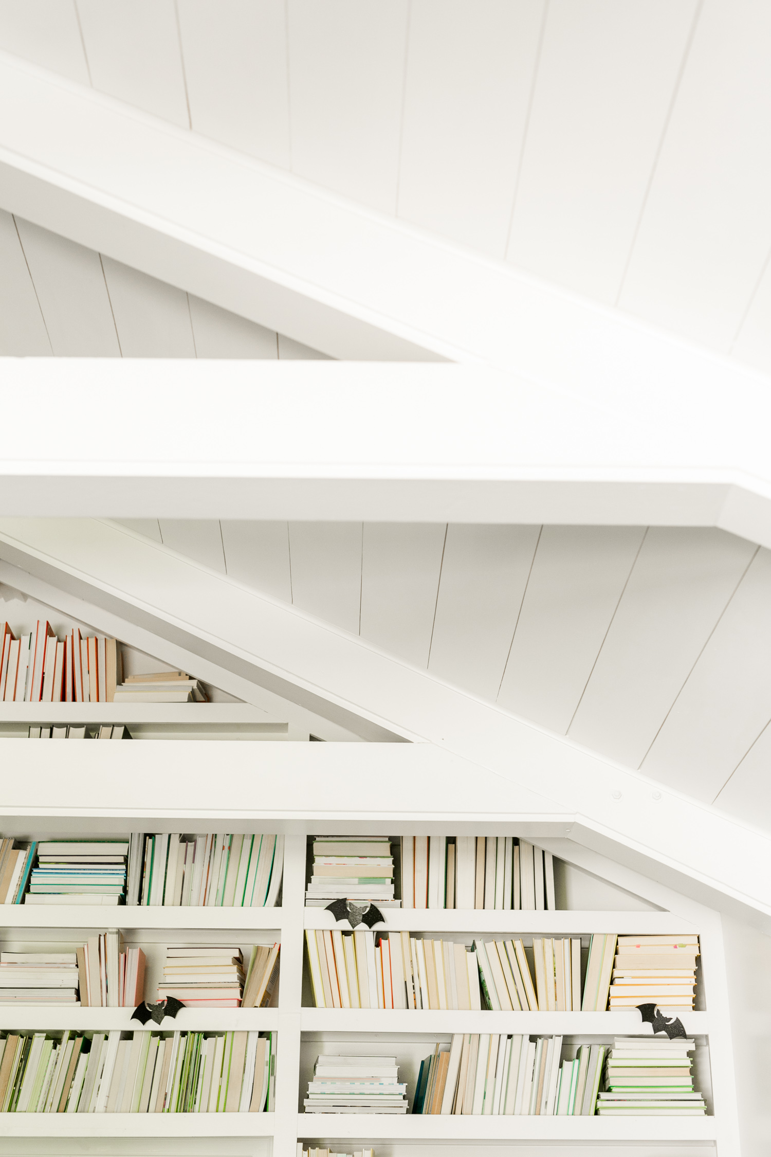 Paneled Ceiling Project