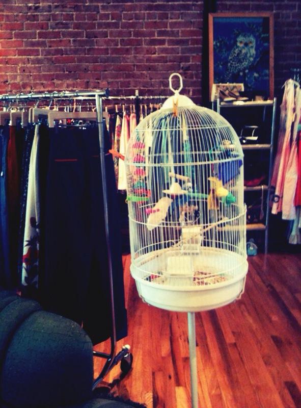 0329f239f8f Donna s Dress Shop - A Beautiful Mess