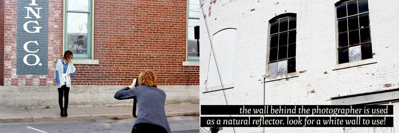 Natural reflector