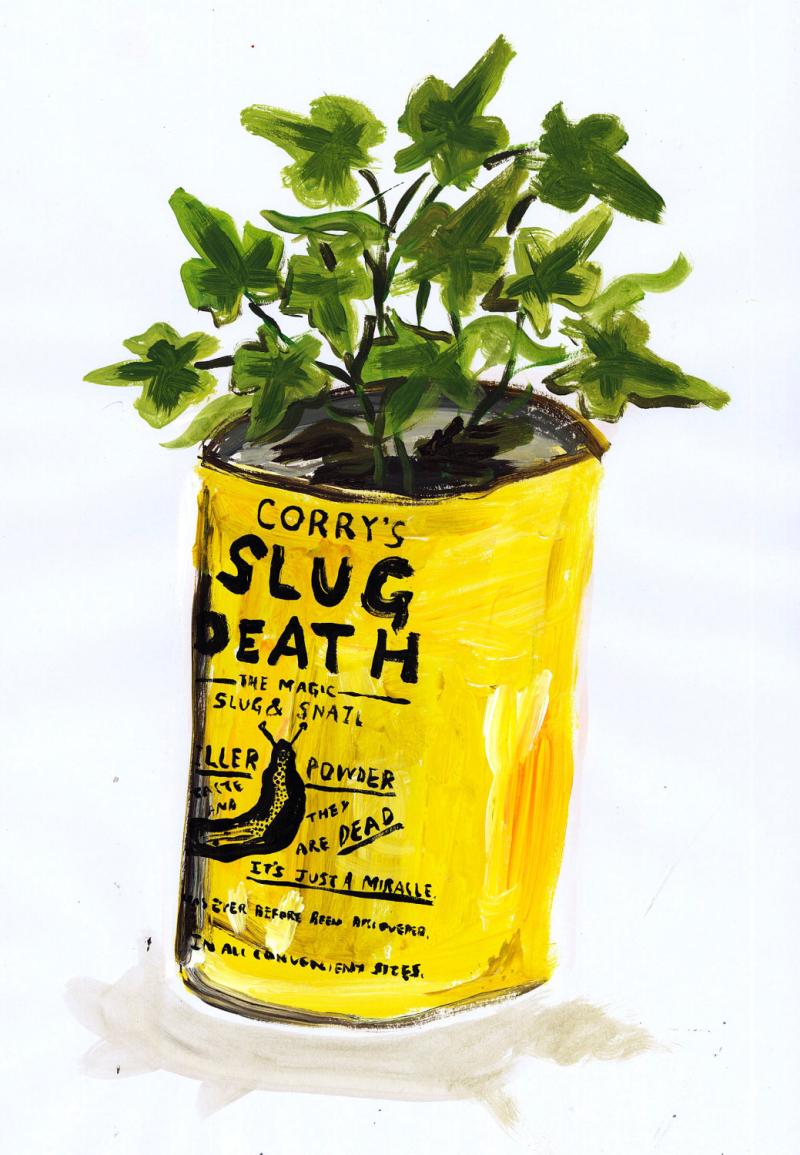 Plant Pot Print