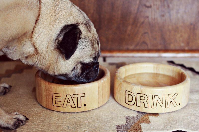 Wood Burned Dog Bowls 1