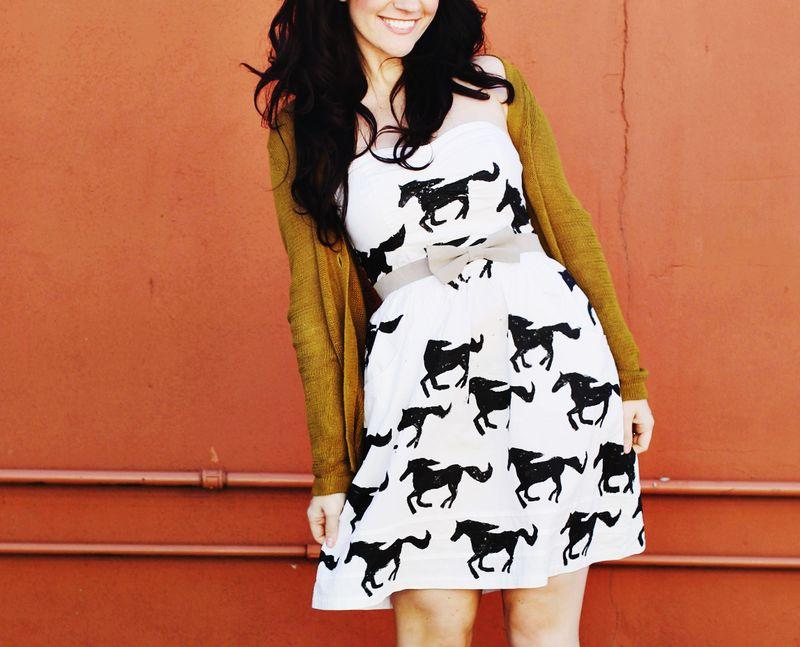 Hand Printed Pony Dress