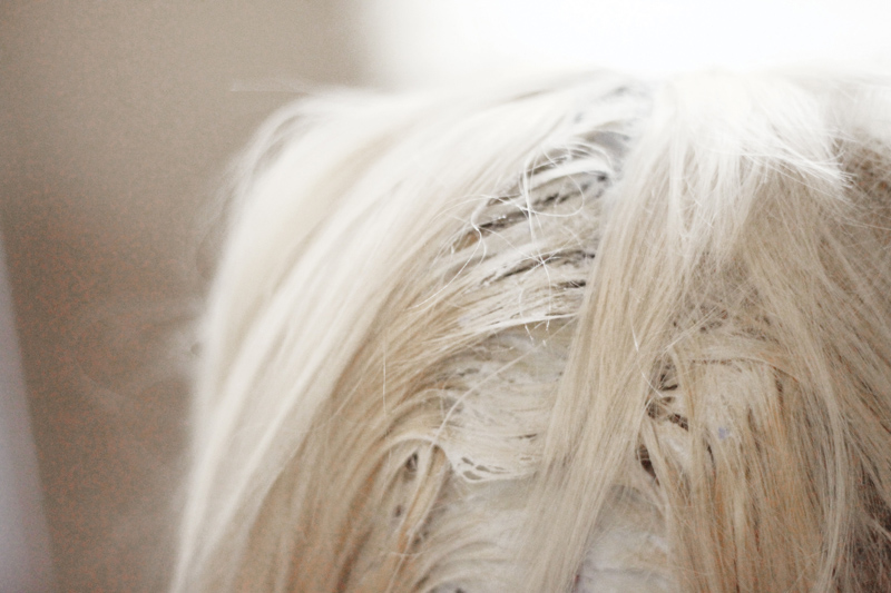 Tips For Maintaining Platinum A Beautiful Mess