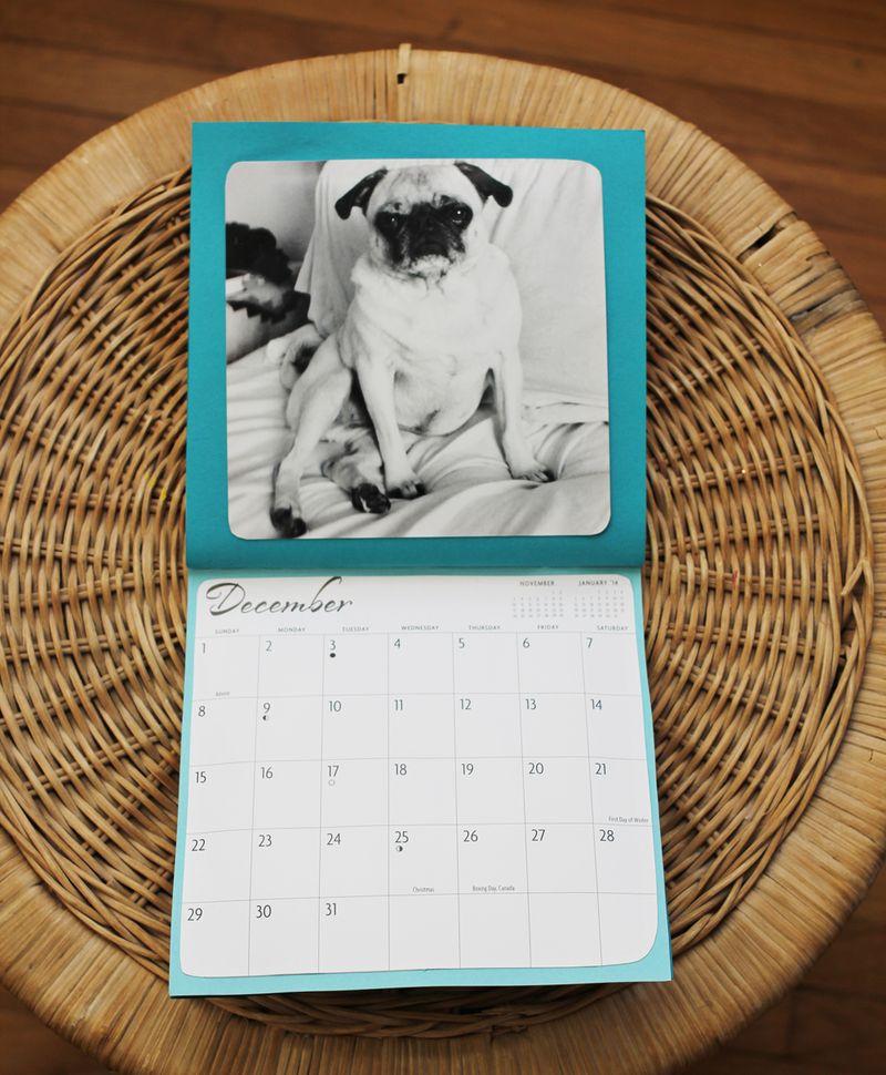 Emma's annual dog calendar