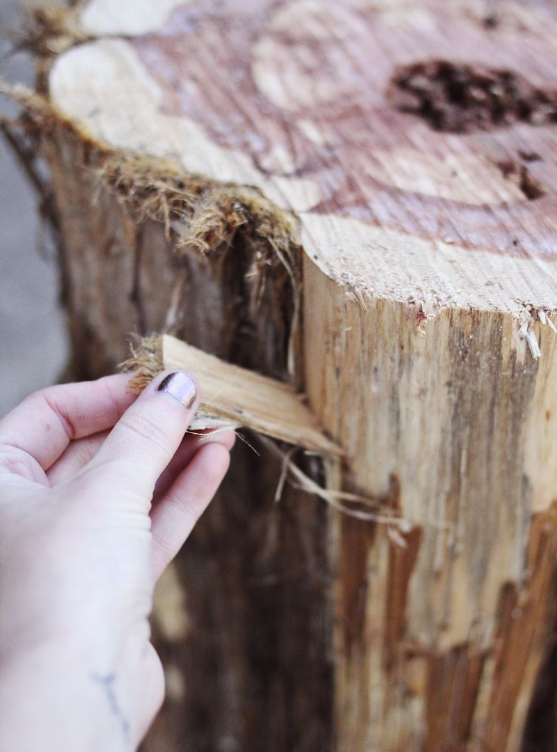 How to get bark off a tree stump