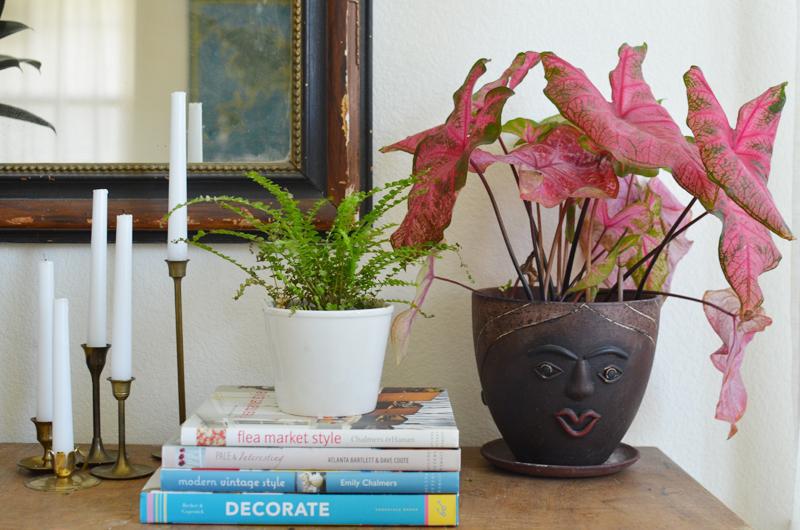 Darling living room details