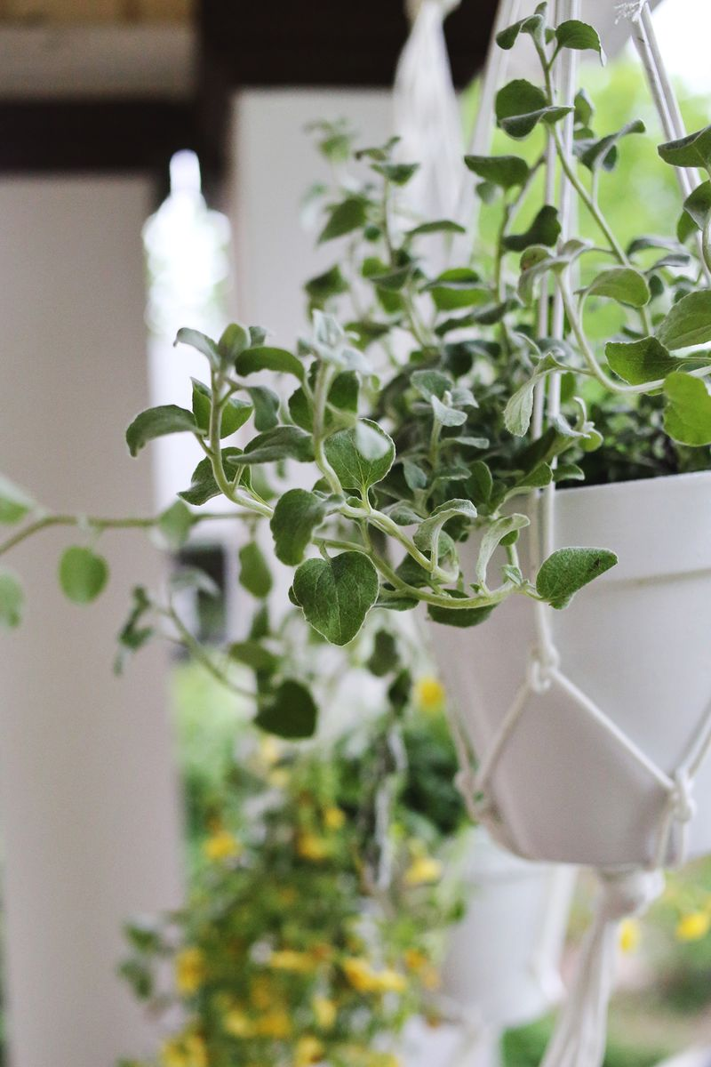 Hanging planters are easy to make!