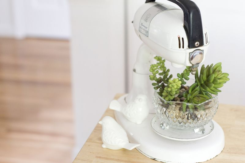 Love these succulents in a vintage mixer