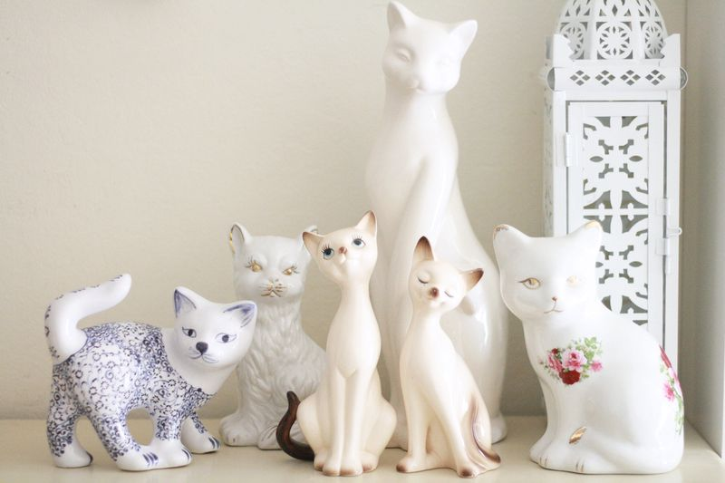 Cute kitty collection