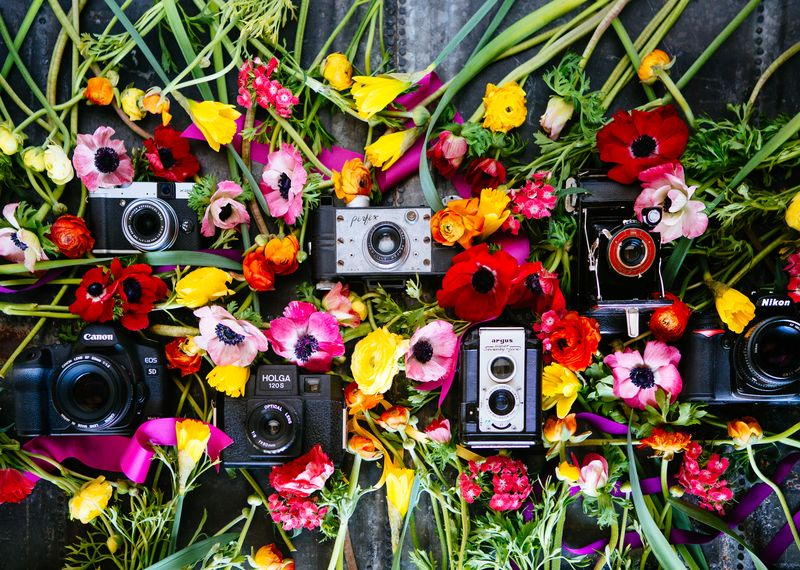 Mastering Your DSLR