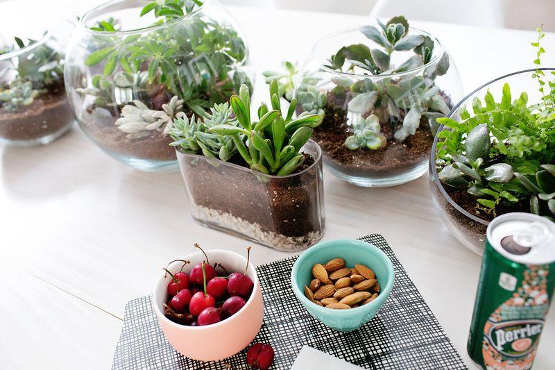 Love this! Terrarium Planter Table Runner