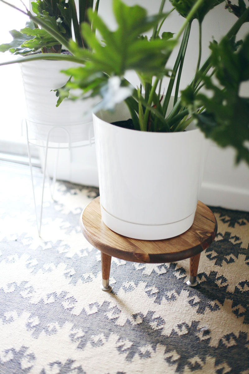 Make this little wooden plant stand to add height to your larger houseplants.