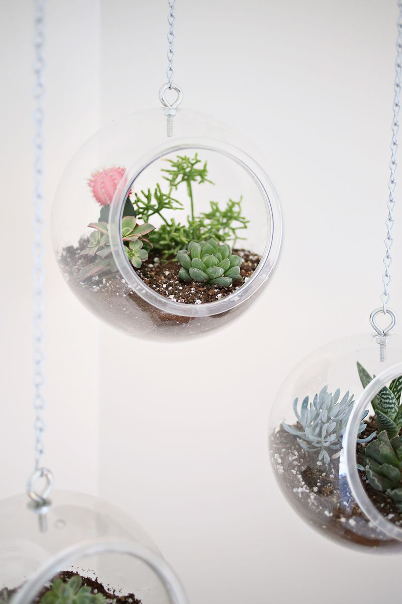 Fishbowl Hanging Planter DIY abeautifulmess.com
