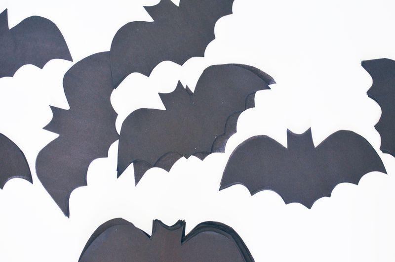Bat step1