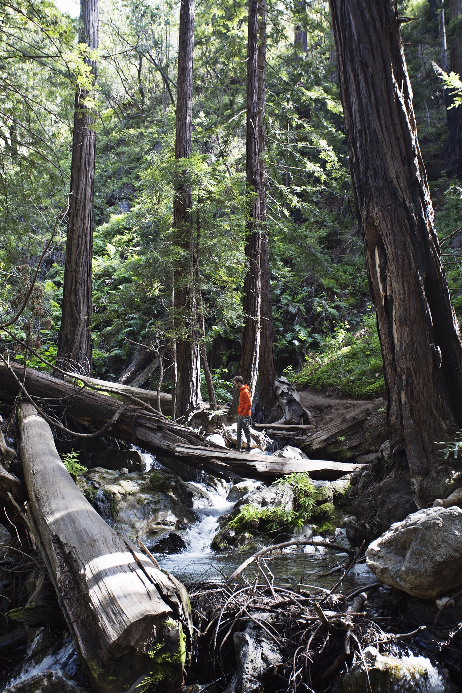 Where to hike in big sur