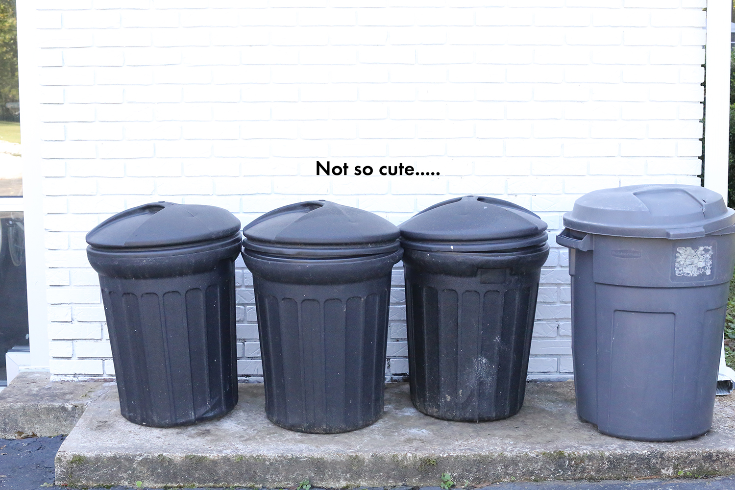 Try this- a modern solution for hiding your trash can BEFORE
