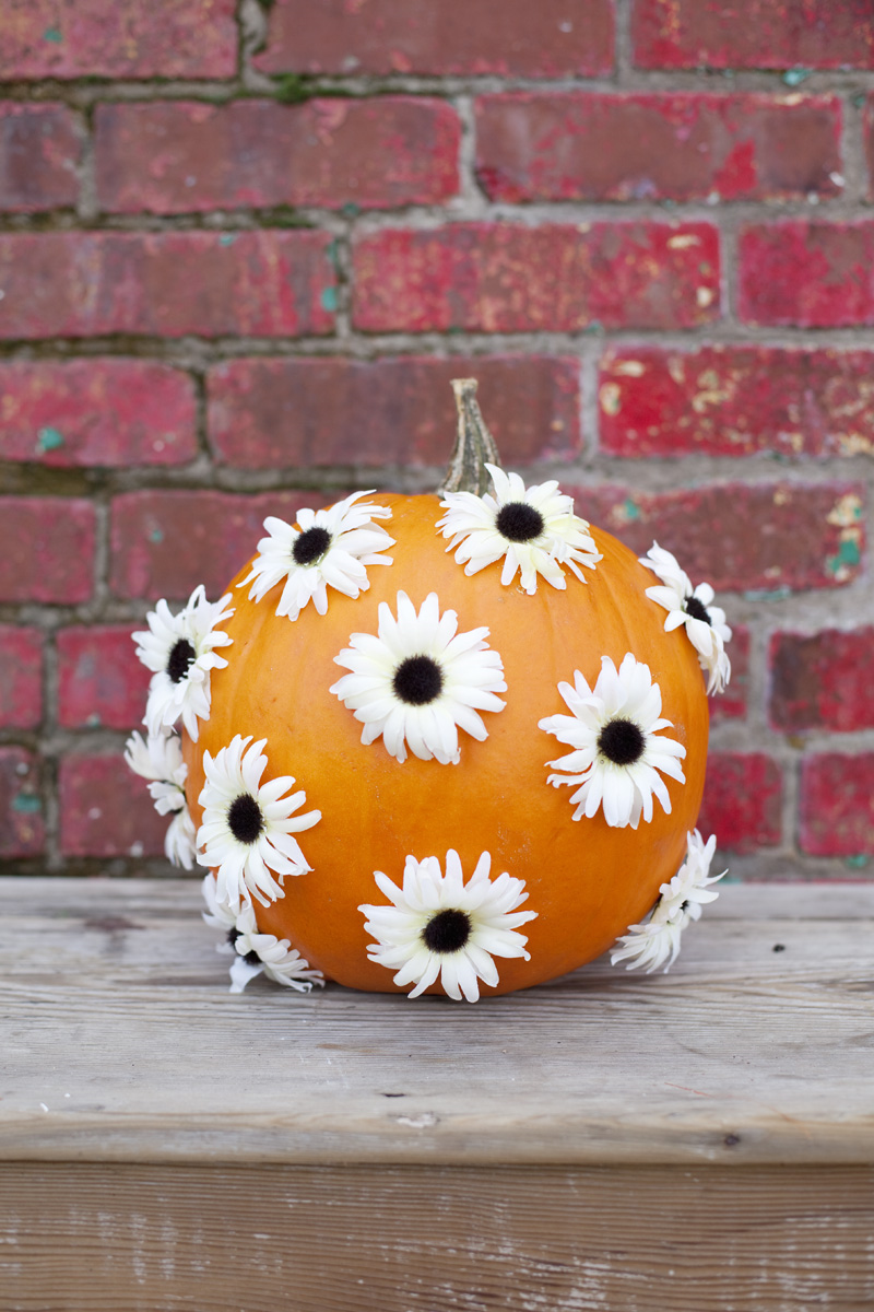 Flower dotted pumpkin decor