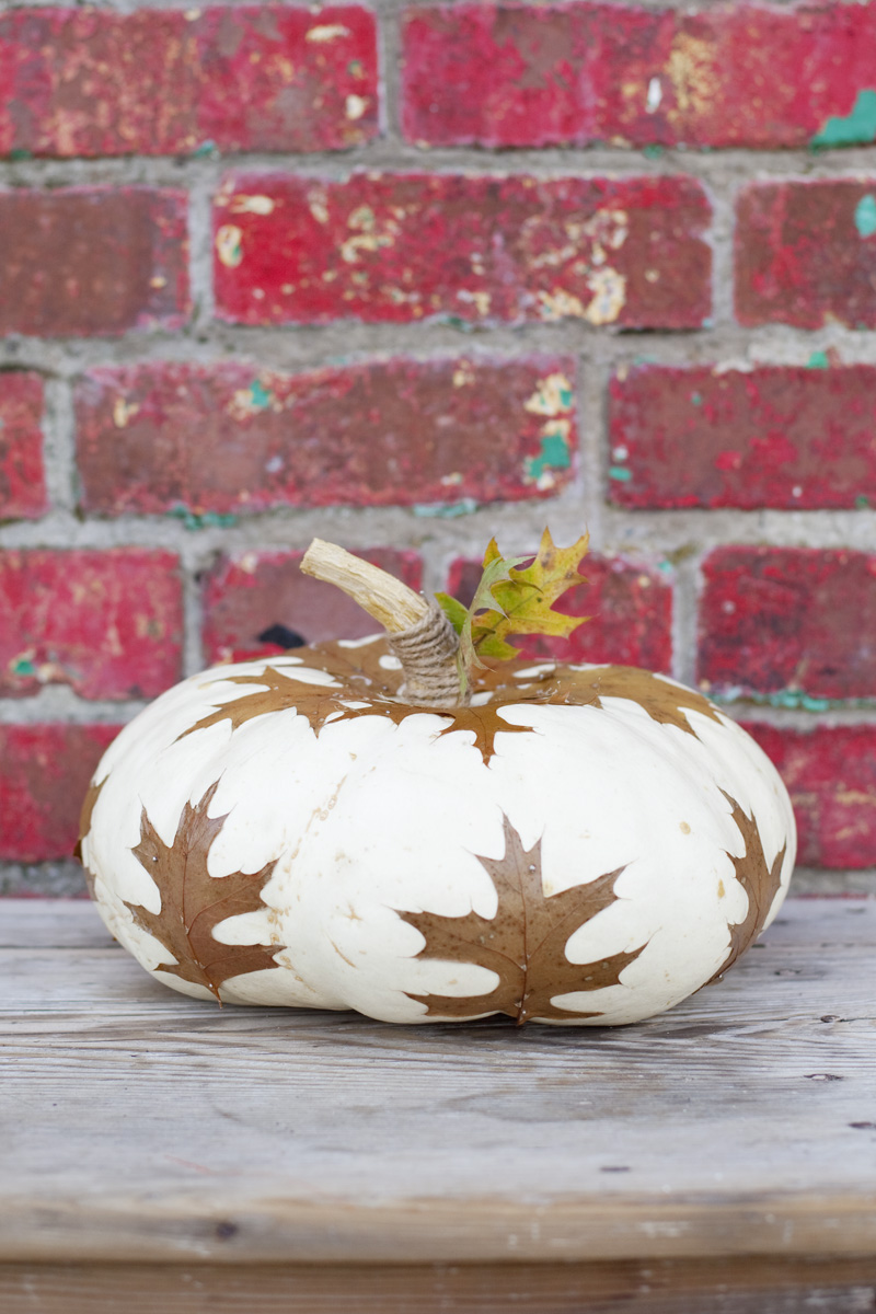 Decopage pumpkins with fallen leaves to add a natural vibe to your fall tablescape
