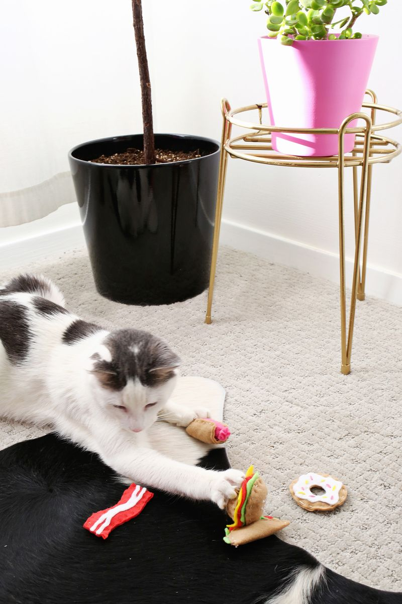 Adorable! Junk Food Cat Toy DIY (click through for tutorial)