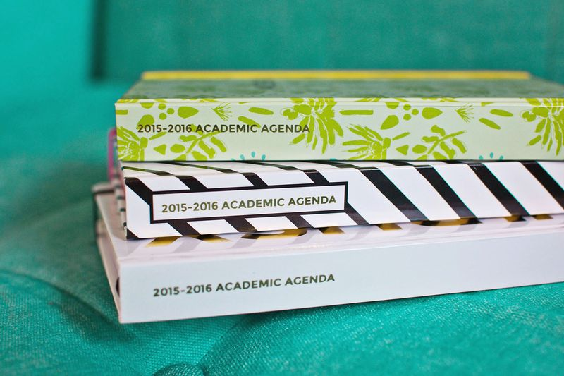 Spiegeling Academic Agendas are here!
