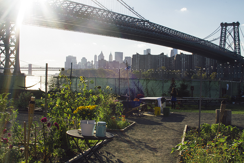 9 Things To Do In Brooklyn This Autumn (click through for more!)