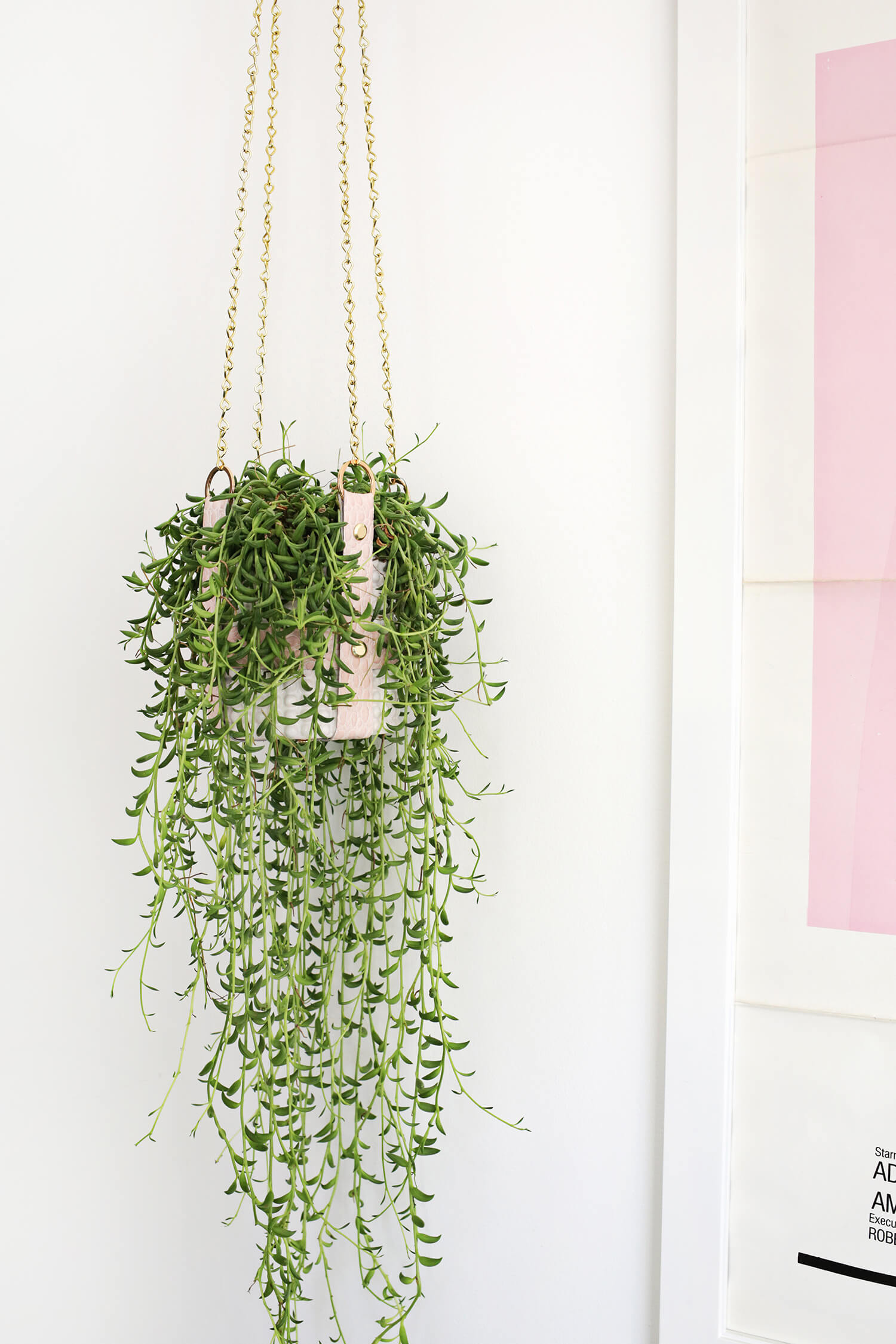 Hanging Leather Strap Planter DIY (click through for tutorial)