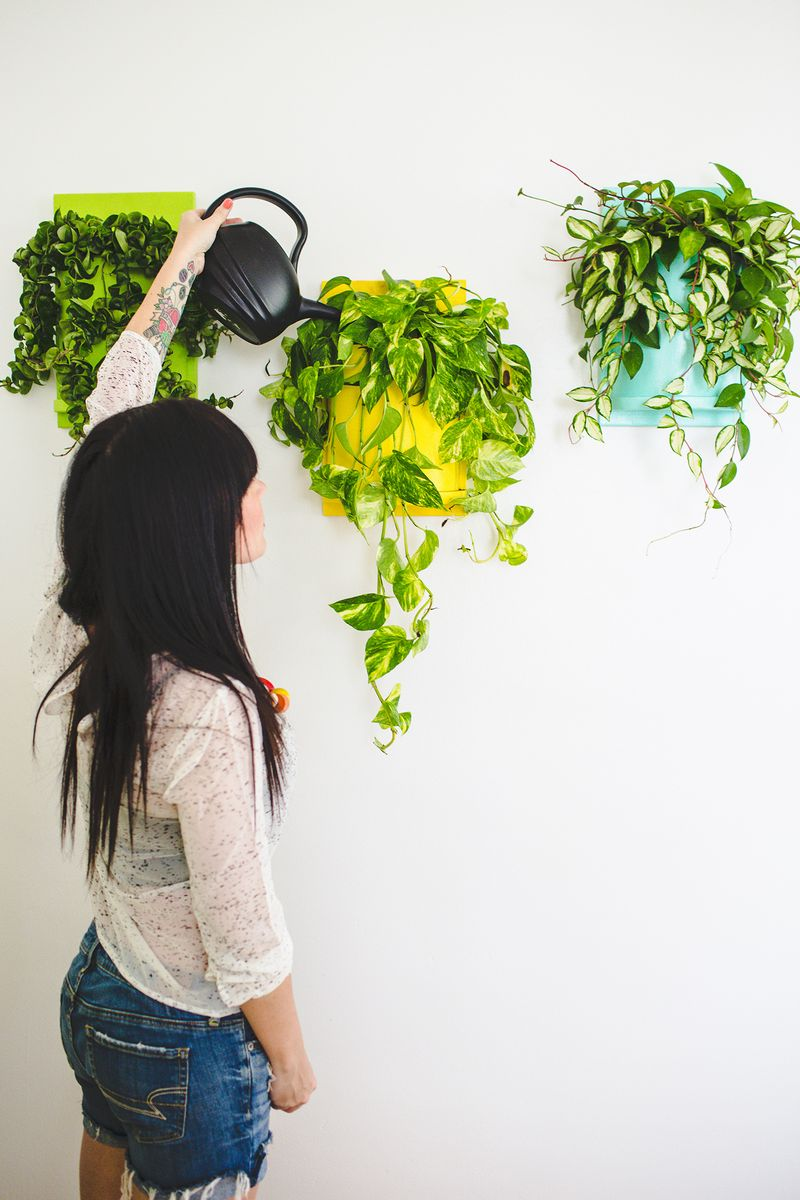 Wall planter (made from pvc pipe, can  you believe it?) click to learn how to make it