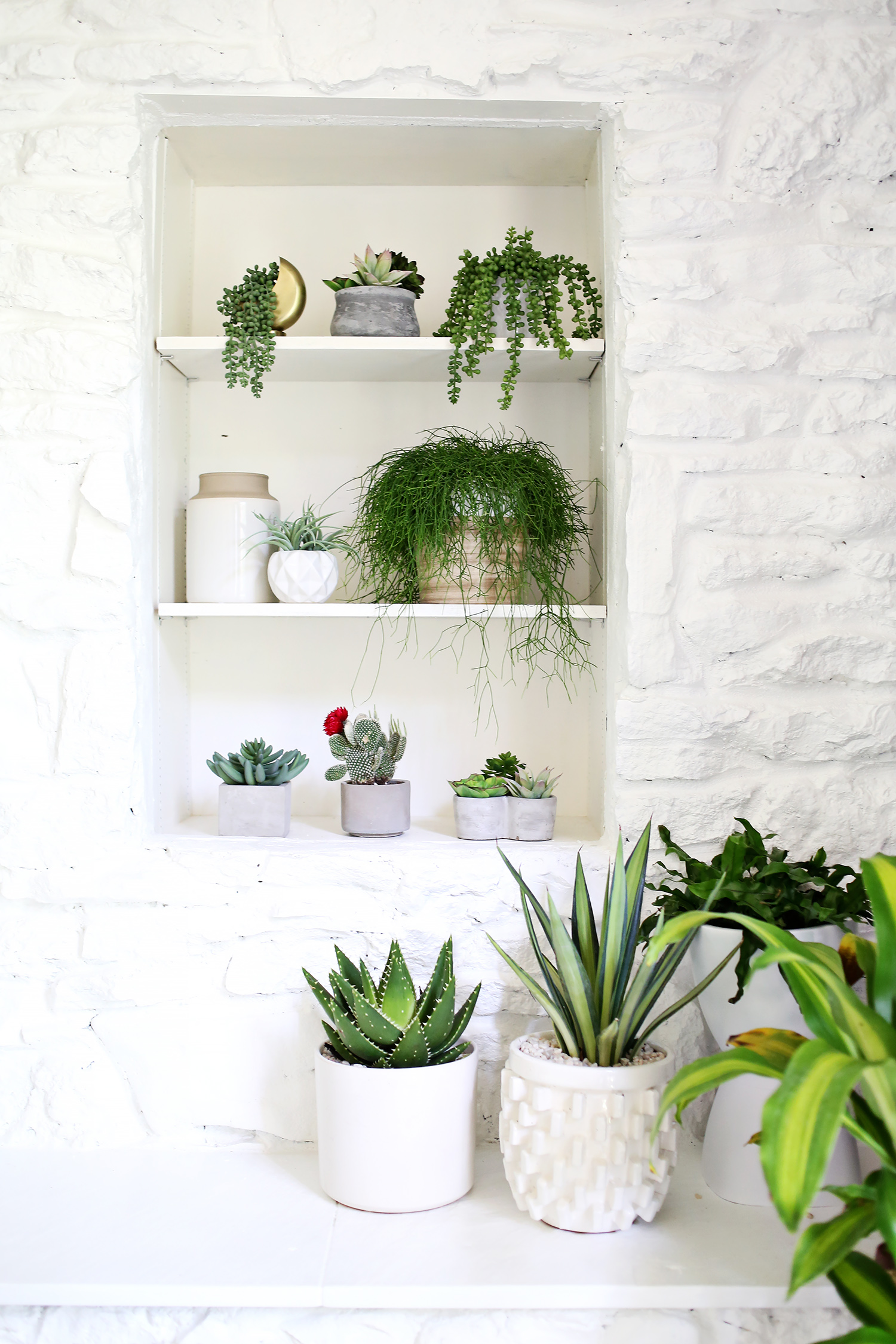 How To Find Convincing Fake Plants