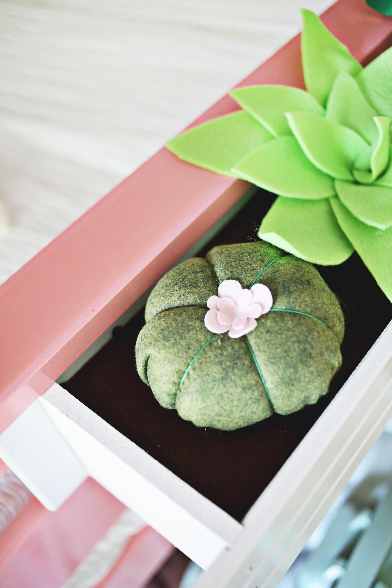 Plush succulent boxes